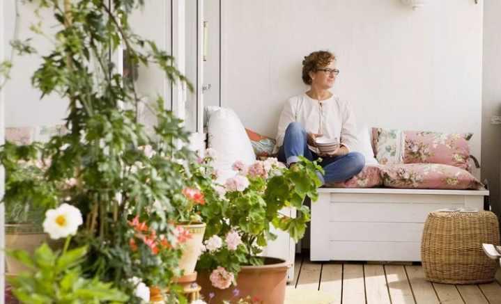 Дом или квартира без цветов может выглядеть безжизненно