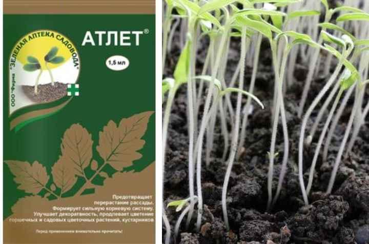 внекорневое внесение возможно для декоративных цветов и овощных культур за исключением капусты.