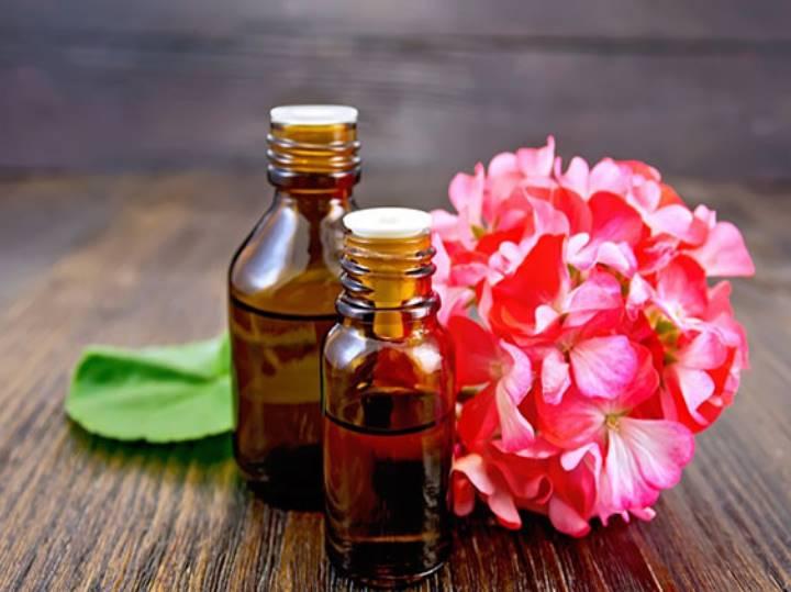 в цветках есть витамины, углеводы, флавоноиды, эфирные масла;